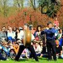 Hanami Parc Sceaux 2015 - Photo Anh-tu David Le